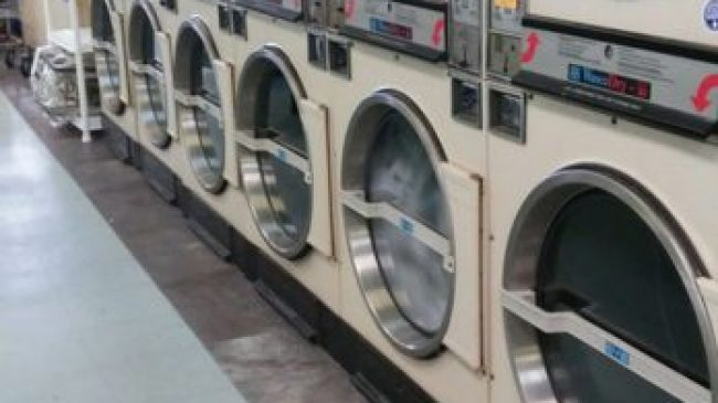 Holiday Coin Laundromat